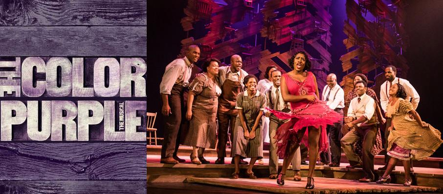 The Color Purple at Mead Theater