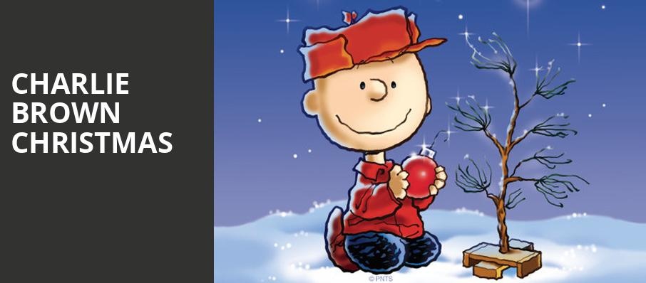 When Is Charlie Brown Christmas On.Charlie Brown Christmas Mead Theater Dayton Oh Tickets